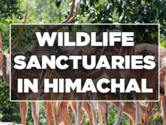 wildlife sanctuaries in himachal